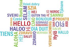 online taaltraining